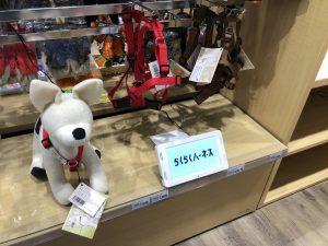 ペットエコ多摩本店で陳列されている写真